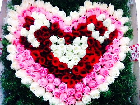 Image result for Love valentine flower