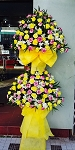 Yello Double Layer Flower Stand