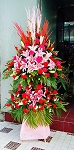 Deluxe Red And Pink Double Layer Flower Stand
